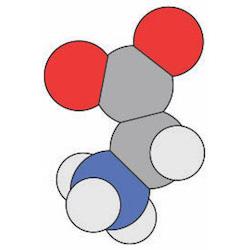 BioMolViz logo